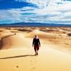 Il Deserto: Tentazione e Vittoria!